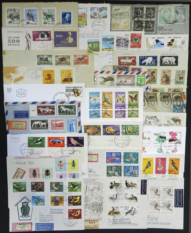 Lot 12 - topic fauna postal history -  Guillermo Jalil - Philatino Auction # 2044 WORLDWIDE + ARGENTINA: General October auction