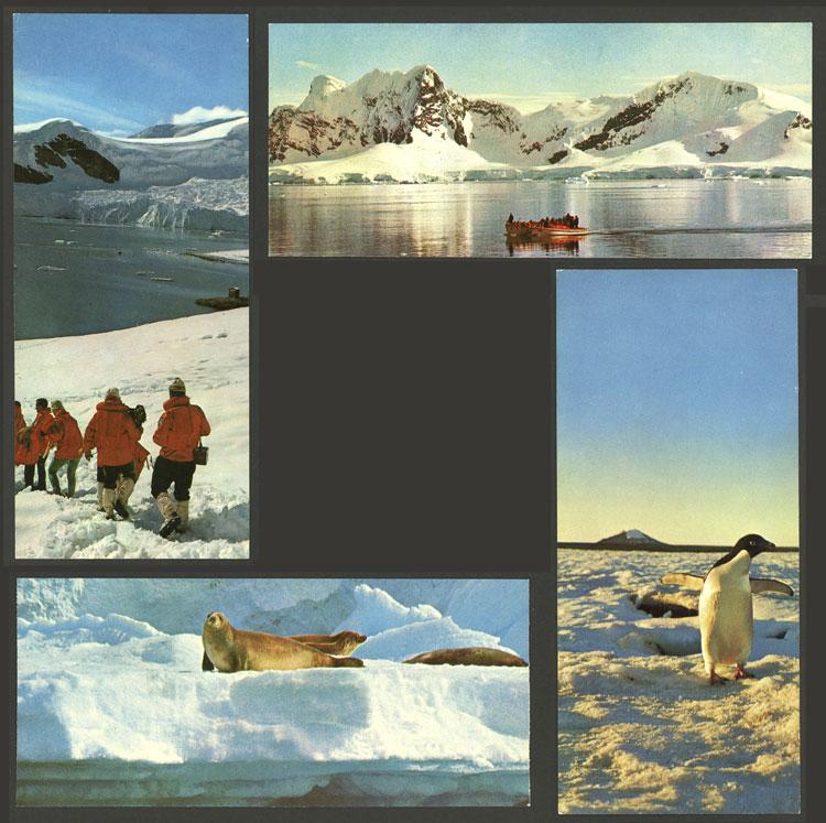 Lot 2 - argentine antarctica postcards -  Guillermo Jalil - Philatino Auction # 2113 ARGENTINA: